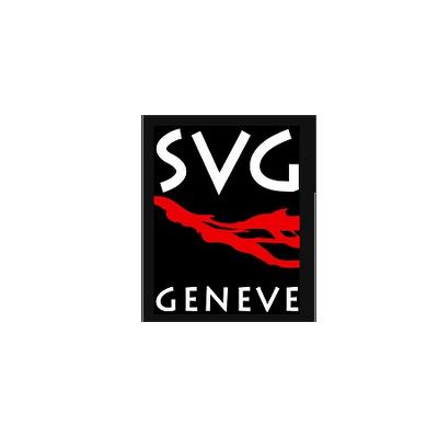 svg_web